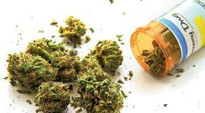 Marihuana nie jest panaceum