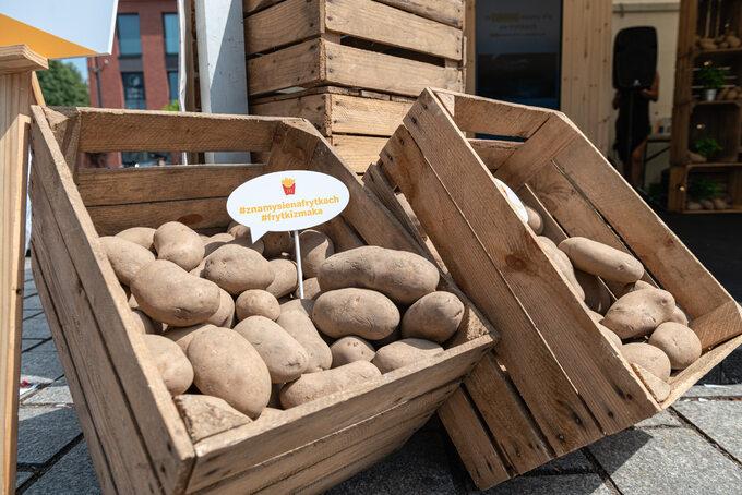 Ziemniaki nafrytki produkowane wfabryce Farm Frites wLęborku