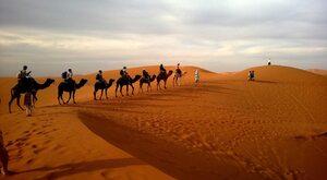 WC na pustyni