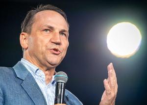 """""""Walnij się w zatłuszczony łeb"""". Sikorski zaatakował polityk Solidarnej..."""