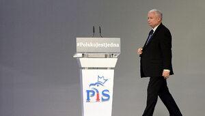 Szczerski: Prezes Kaczyński nie wchodziłby do rządu tymczasowego