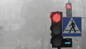 Nowy znak przy polskich drogach. Co oznacza?