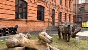Trwa plenerowa wystawa rzeźb i obrazów Wilkonia w praskim Koneserze