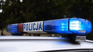 Horror w Gdańsku. Kobieta powiesiła się na drzewie