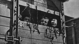 Tylko Niemcy odpowiadają za Holokaust
