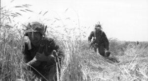 """""""Barbarossa"""": Klęska na własne życzenie"""