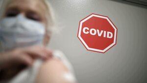 Francja: Instytut Pasteura zawiesza prace nad jedną ze swoich...