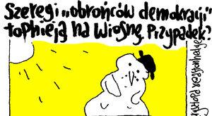 """Topnieją szeregi """"obrońców demokracji"""""""