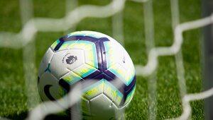 Znany piłkarz Premier League podejrzany o pedofilię