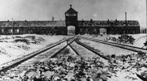 Zaskakujący sondaż. 2/3 młodych Amerykanów nie kojarzy Auschwitz