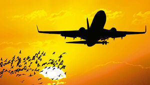 Jak latać za grosze