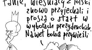 Wieśniacy z Polski