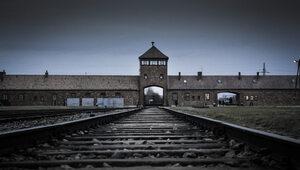 Rocznica wyzwolenia niemieckiego obozu Auschwitz. Katarzyna Lubnauer...