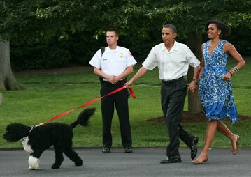Barack i Michelle Obama z psem Bo