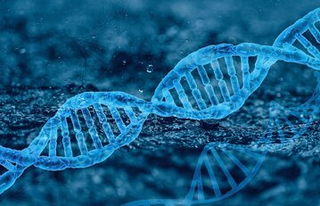 DNA, zdjęcie ilustracyjne