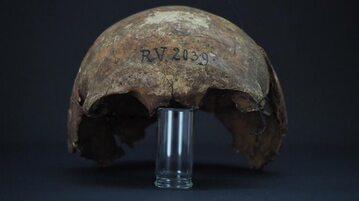 Fragment czaszki człowieka z Rinnukalns