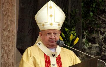 Kard. Stanisław Dziwisz