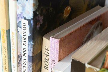 książki na półce, zdjęcie ilustracyjne