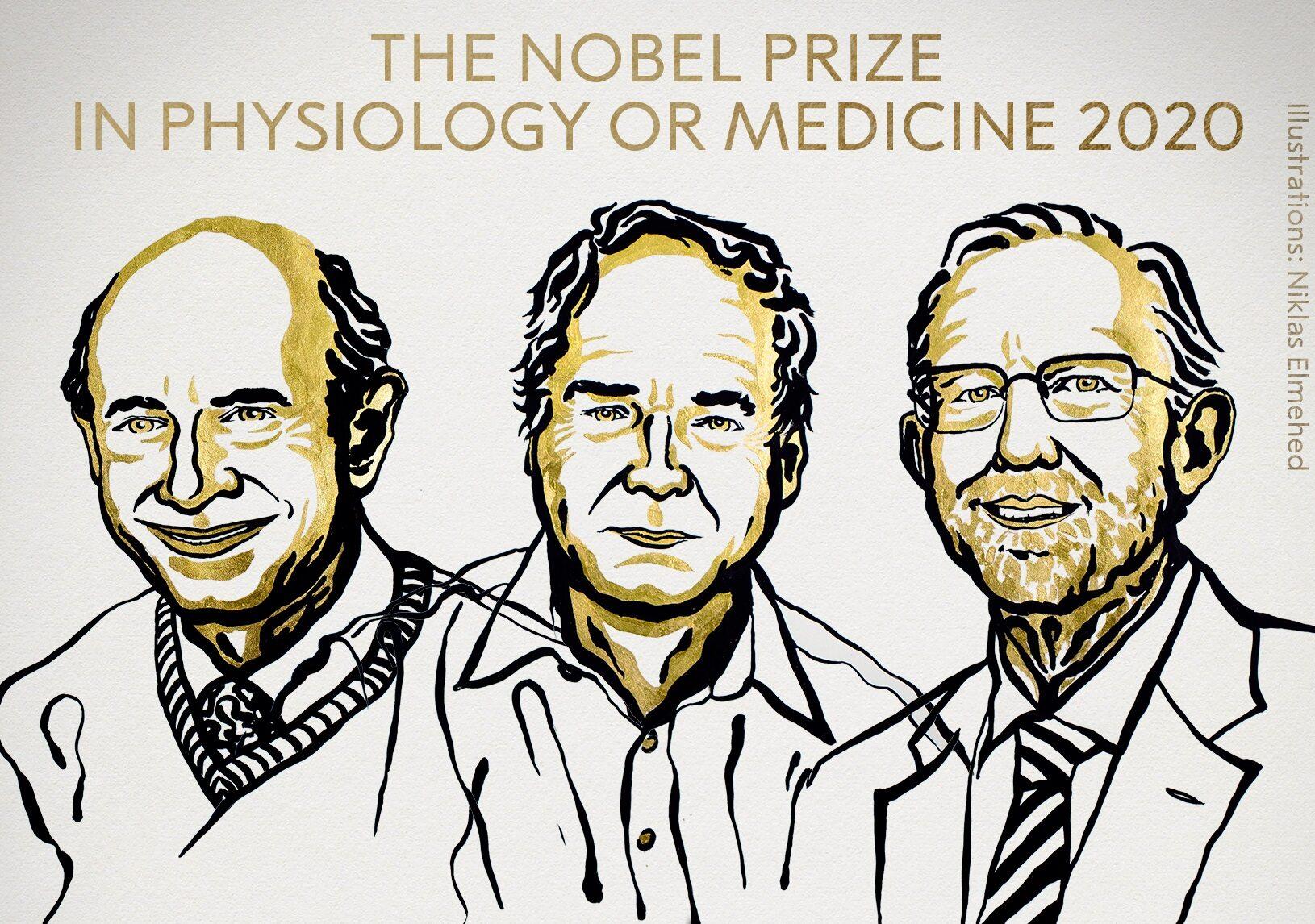 Michael Houghton, Harvey Alter i Charles Rice odkryli wirusa powodującego zapalenie wątroby typu C