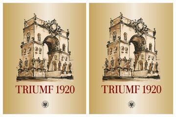 """Okładka książki """"Triumf 1920. Obraz i pamięć"""""""