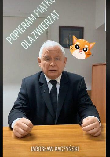 Prezes PiS zabrał głos ws. projektu ustawy ws. ochrony zwierząt.