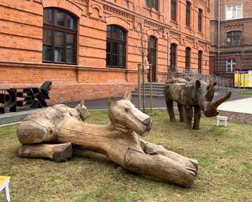 """wystawa """"Świat Wilkonia"""" na placu Konesera"""